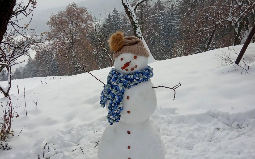 Kiparjenje v snegu